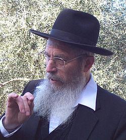 Rabbi Yisrael Ariel on yksi avoimen kirjeen allekirjoittajista.