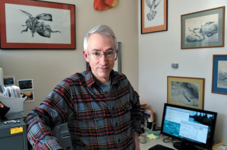 Professori David Sloan Wilson.