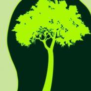 Luonnonsuojelu kansallismielisessä liikkeessä