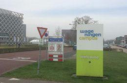 Aktivismia Alankomaissa